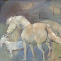 Tierportrait Ponys und Ziege