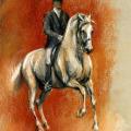 Pferdezeichnung Kreide