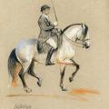 Pferde Piaffe
