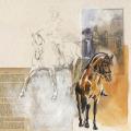 Pferde Zeichnung Schulterherein