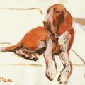 Hunde zeichnung