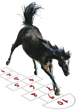 Logo Pferde Hunde