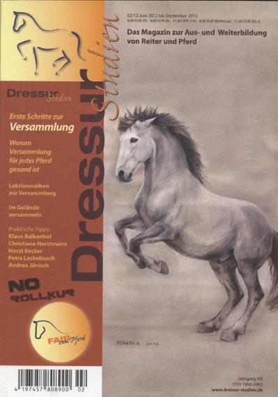 Pferdezeichnung, Pferdeillustration