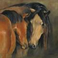 Pferdemalerei Pferdefreude 1