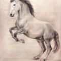 Pferdemalerei Ledae Orgulosu