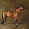 Pferdegemälde Standbild