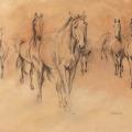 Pferdezeichnung Herde