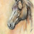 Tierportrait Pastell