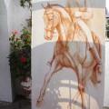 Pferde Zeichnung Dressur Traversale