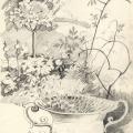 Garten gezeichnet