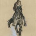 Pferdezeichnung Dressur