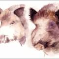Jagdmalerei Tierportrait Schwarzwild